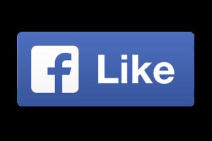 https://www.facebook.com/Pro-Valet-292059404999312/?modal=admin_todo_tour